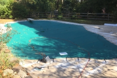 prell-pool-gallery-photo-8